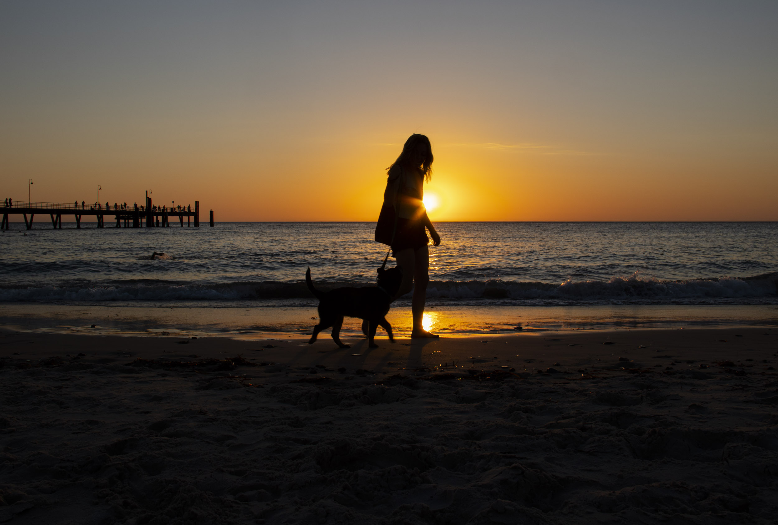 Girl and Dog in Sunrise